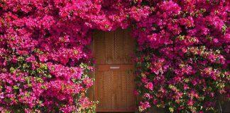 30 nádherných dverí, ktoré vyzerajú ako brány do iných svetov