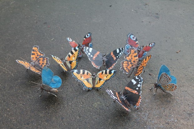JK Brown meni zelezny odpad na umenie v podobe zvierat 11