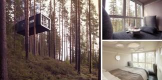 Švédsky stromohotel s tematickými izbami na stromoch uprostred prírody