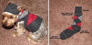 Svetrík pre psíka z ponožky