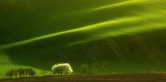 Morava malé Toskánsko | Fotografie Moravy od Marcin Sobas