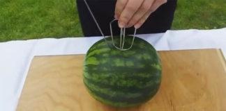 Letný melónový nápoj pomocou mixéru bez zbytočného neporiadku