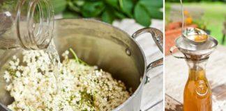 Bazový sirup ako od babičky | Domáci recept