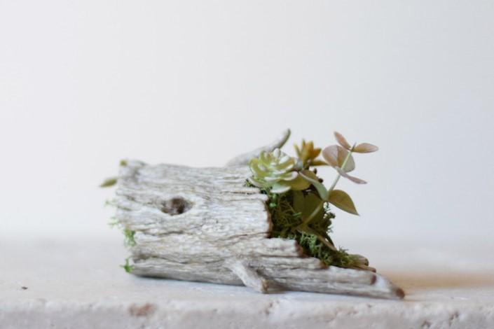 harimogura roztomile kvetinace 11