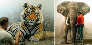 Maľby zvierat v životnej veľkosti | Richard Symonds