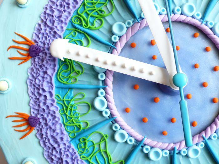 vyraba-hodiny-z-polymeru-inspirovane-podvodnym-svetom-a-prirodou-ako-takou-11