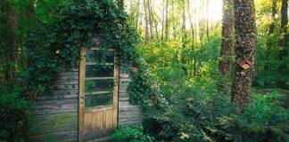 Osamelé domčeky v objatí malebnej prírody | 20 domčekov v prírode