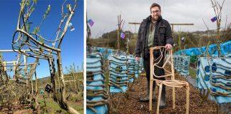 Gavin Munro pestuje vlastné drevené kúsky nábytku Full Grow