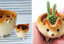 Keramika Shiba Inu si vás získa svojou roztomilosťou   Tetsuya Iseda