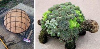 Korytnačka zo sukulentov | DIY nápad a návod na záhradnú dekoráciu