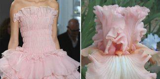 Móda inšpirovaná prírodou | Fascinujúce porovnania Where I See Fashion