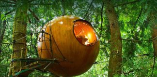 Guľaté domčeky v korunách stromov Vancouver Island | Free Spirit Spheres