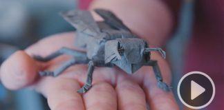 Z fyzika pracujúceho pre NASA sa stal umelec skladajúci origami | Robert Lang