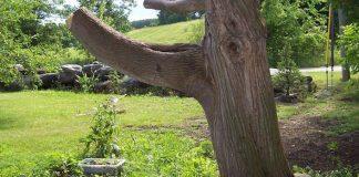 Hradná veža a drak vyrezávaný zo stromu, do ktorého trafil blesk