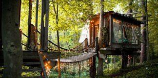 Tri domčeky na stromoch prepojené mostíkmi majú ľudia za raj na zemi!
