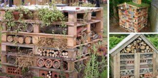 Domček pre hmyz | 5 dôvodov prečo ho vytvoriť a návod ako postupovať