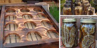Úľ v zaváraninových pohároch | DIY nápad a návod ako zhotoviť vlastný úľ