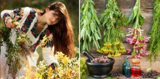 Tradičné prírodné lieky od babičiek z Ruska, ktoré skutočne fungujú