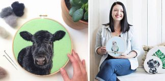 Plstené portréty zvierat vyzerajú ako živé | Handmade tvorba Dani Ives