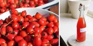 Šípkový sirup | Recept na multifunkčný zázrak z prírodnej lekárne