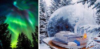 Bubble Hotel na Islande ponúka ubytovanie v bublinách uprostred lesa