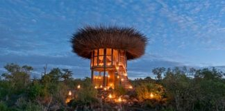 Hotel vtáčie hniezdo v Keni ponúka nezabudnuteľný zážitok