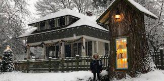 Knižnica z pňa stromu | Peň stromu ako rozprávková verejná knižnica