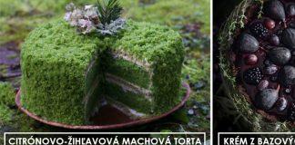 Dezerty inšpirované prírodou | Suroviny hľadá v záhrade, lese či na lúkach