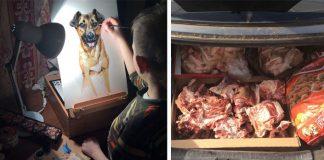 Maľby zvieratiek vymieňa za krmivo a pomôcky do psích útulkov