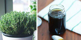 Domáci tymianový sirup proti kašľu | Recept, ako si vyrobiť sirup z tymiánu
